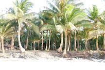 Dako Island, Siargao Island, Philippines