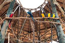 Aviario Nacional de Colombia, Isla Baru, Colombia