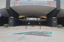 The Bank of America Stadium, Charlotte, United States