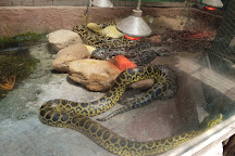 The Animal Sanctuary at Butterfly World, Klapmuts, South Africa