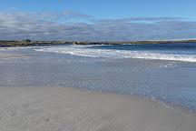 Surf Bay, Stanley, Falkland Islands