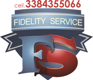FIDELITY SERVICE SNC