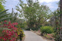 Ein Gedi Botanical Garden, Ein Gedi, Israel
