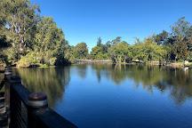 Gold Coast Regional Botanic Gardens, Benowa, Australia