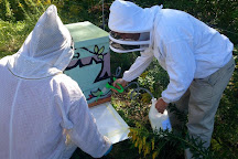 Parry Sound and Area Community Apiary, Parry Sound, Canada