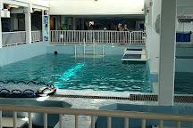 Clearwater Marine Aquarium, Clearwater, United States
