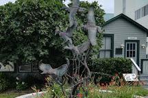 Atlantic Wildfowl Heritage Museum, Virginia Beach, United States
