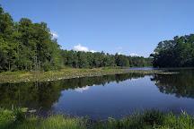 Barnwell State Park, Blackville, United States