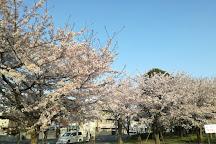 Osubosai Park, Ichikawa, Japan