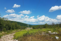 Seven Tubs Natural Area, Wilkes-Barre, United States