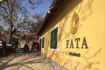 Fata Cellar, Badacsonytomaj, Hungary