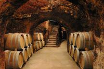 The Madrid Wine Experience, Madrid, Spain