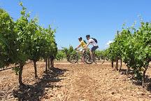 Mallorca Wine Tours, Santa Maria del Cami, Spain