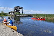 Point Pelee National Park, Leamington, Canada
