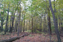 Girdled Road Reservation, Concord, United States