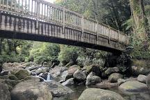 Wairere Falls, Okauia, New Zealand