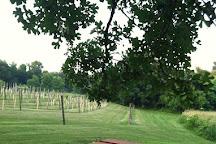 Morgan Creek Vineyards, New Ulm, United States