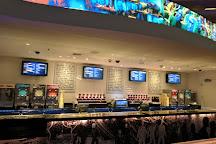 Blue Man Group, Las Vegas, United States
