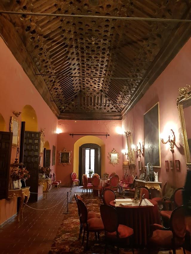 Casa-Palacio de los Palmas
