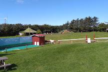 Family Farm Fun Park, Lokken, Denmark