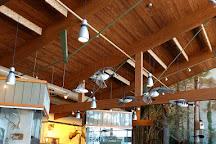 Witt Stephens Jr. Central Arkansas Nature Center, Little Rock, United States