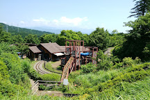 Odawara Wanpaku Land, Odawara, Japan