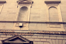 National Museum of Ireland - Natural History, Dublin, Ireland