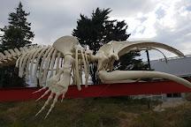 Ecocentro, Puerto Madryn, Argentina