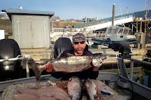 Fish N' Chips Charters, Kodiak, United States