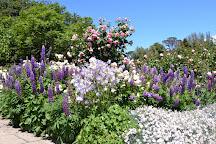 Royal Tasmanian Botanical Gardens, Hobart, Australia
