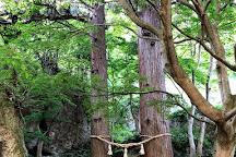 Kimimachizaka Park, Noshiro, Japan
