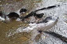 Carpenter Falls, Skaneateles, United States