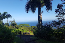 Hana Highway - Road to Hana, Maui, United States