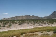 Mapimi Biosphere Reserve, Chihuahua, Mexico