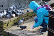 Weston Park, Sheffield, United Kingdom