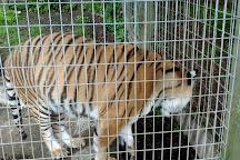 Animaland Zoological Park, Wellsboro, United States
