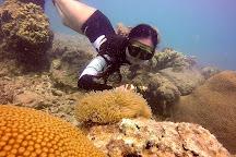 Freedive Perhentian, Pulau Perhentian Kecil, Malaysia