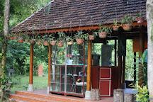 Phong Nha Botanic Garden, Son Trach, Vietnam