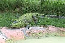 Texas Reptile Zoo, Bastrop, United States