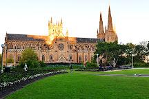 Free Tours Sydney - Walking & Bus Tours, Sydney, Australia