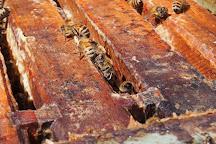 Tugwell Creek Honey Farm and Meadery, Sooke, Canada