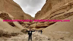 Dolphin Travel Perú - Agencia de Turismo en Ica 0