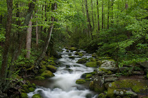 Roaring Fork, Great Smoky Mountains National Park, United States