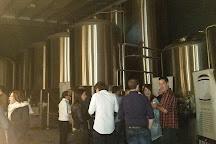 Bru Brewery, Trim, Ireland