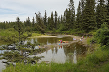 Red Lodge Provincial Park, Spruce View, Canada