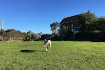 Abbotsford Convent, Abbotsford, Australia