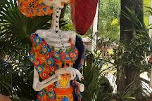 Edventure Tours, Tulum, Mexico