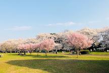 Nogawa Park, Mitaka, Japan