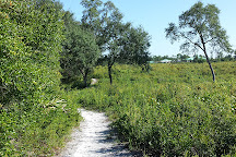Lyonia Preserve, Deltona, United States