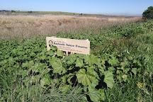 Baylands Nature Preserve - City of Palo Alto, Palo Alto, United States
